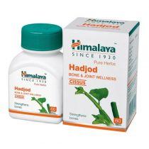 hadjod-wellness