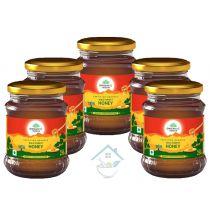 Honey 250gm wild forest honey Organic India 10% discount pack of 5